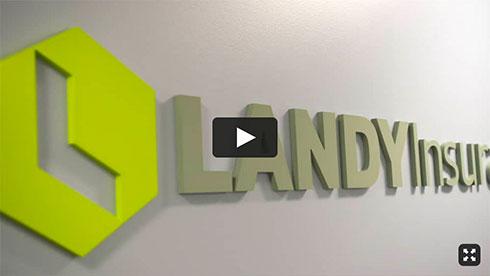 play landy video in new window